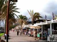 Gay -Tenerife.de: Los Cristianos auf …