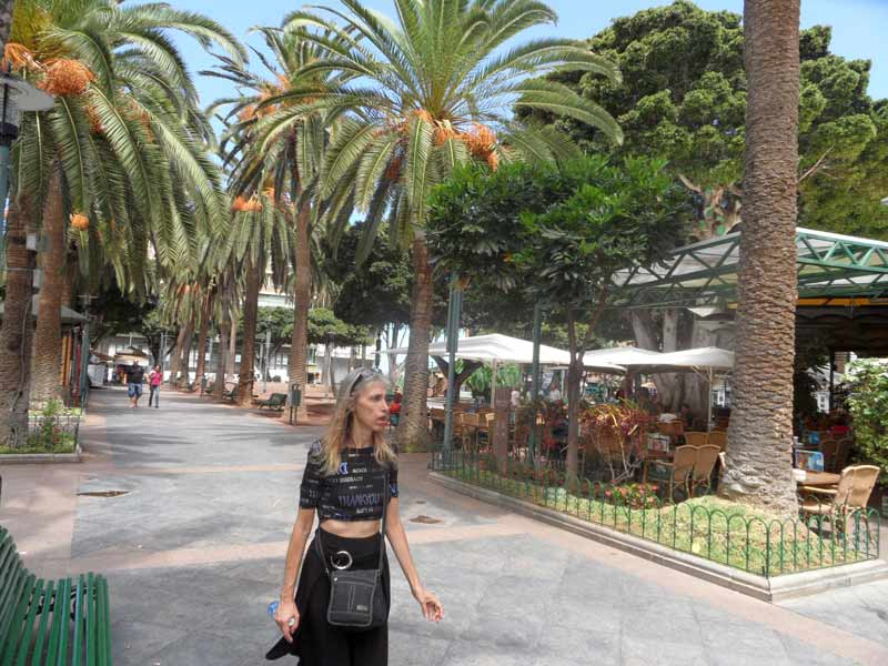 Puerto de la cruz north tenerife canary islands spain resort information and guide - Park plaza puerto de la cruz ...